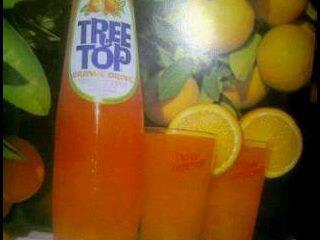 treetoops